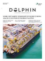 Dolphin November 2019